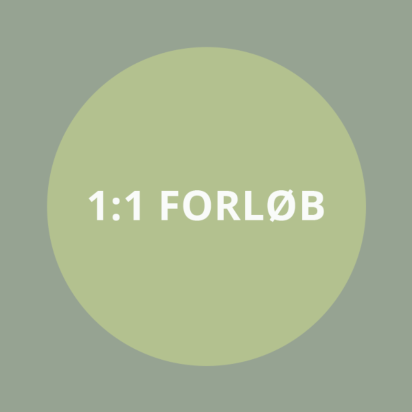 JZ-grafik_forloeb